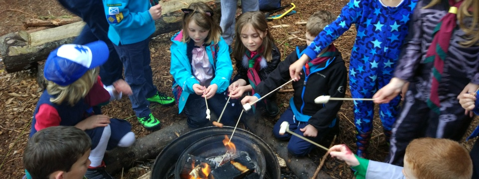 Young people with marshmallows round a fire